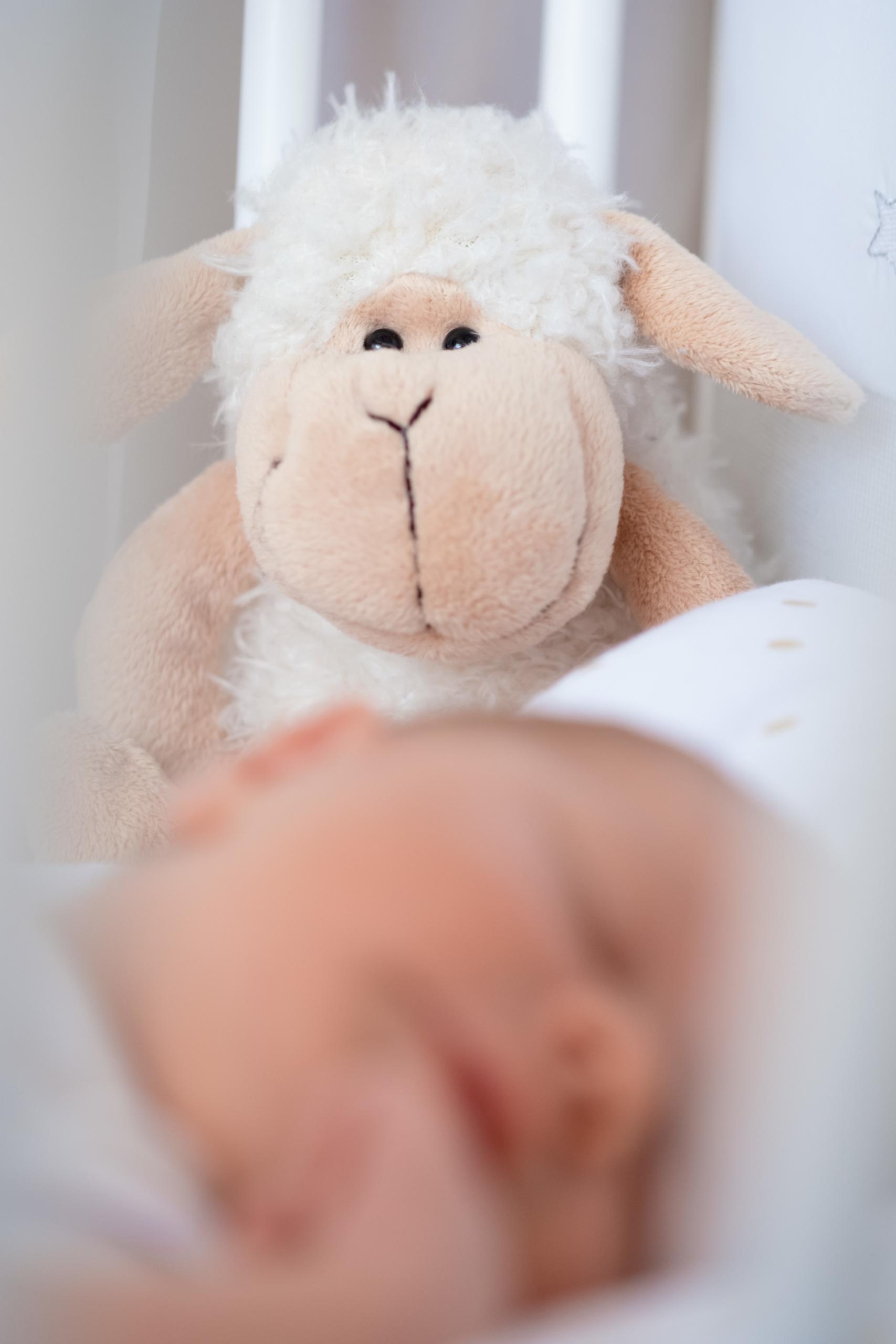 Newborn Shooting Baby Nürnberg Ansbach Erlangen Fürth Franken
